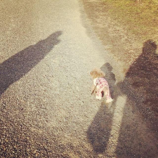 dkstudio Instagram Image